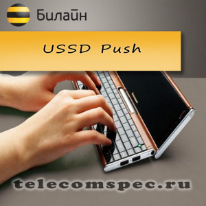 USSD Push
