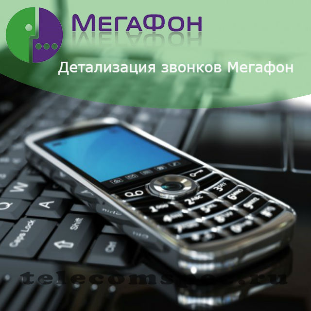 Детализация Мегафон