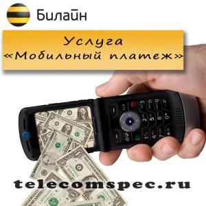 Мобильный платеж
