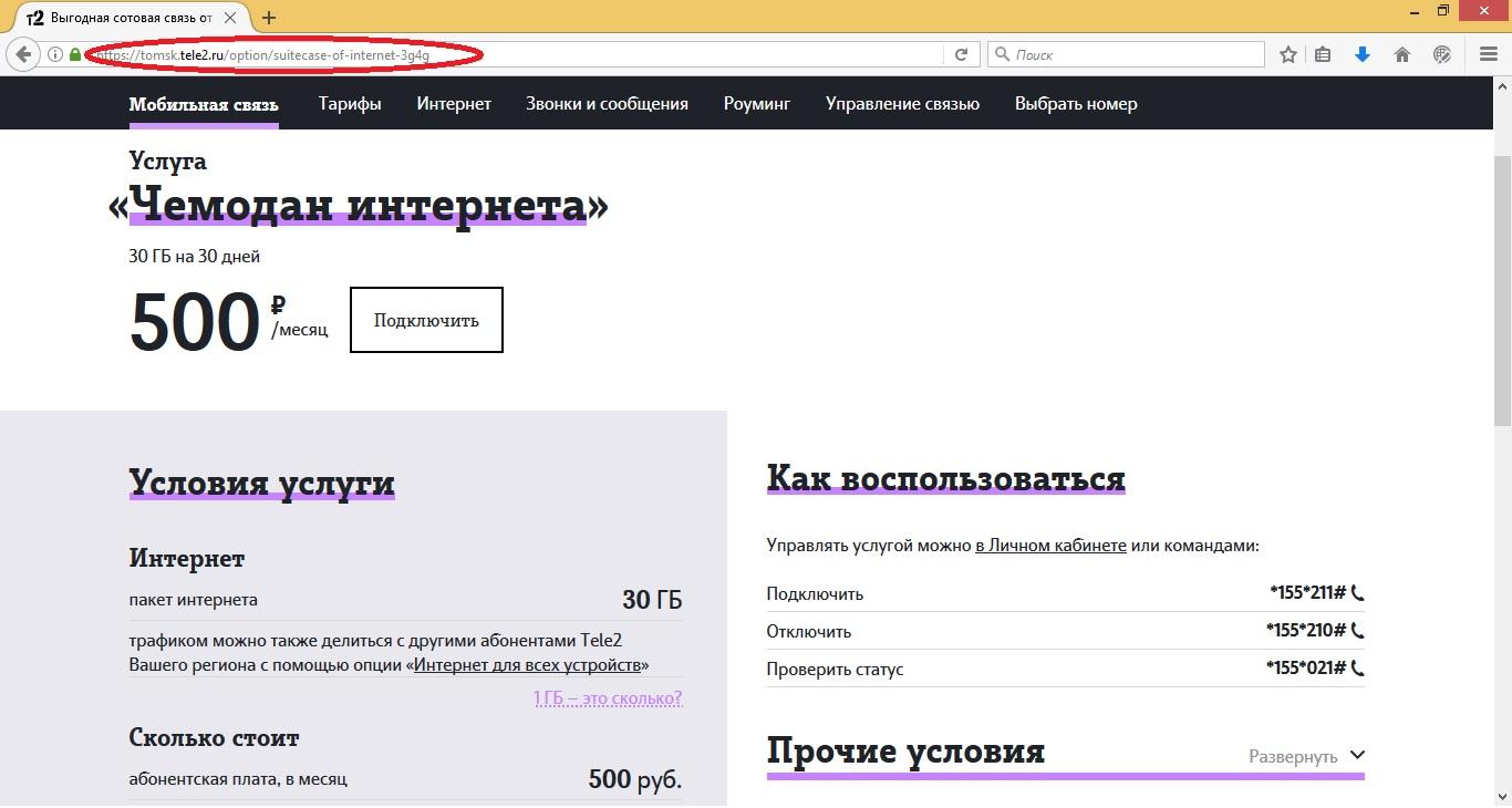 Чемодан интернета на сайте
